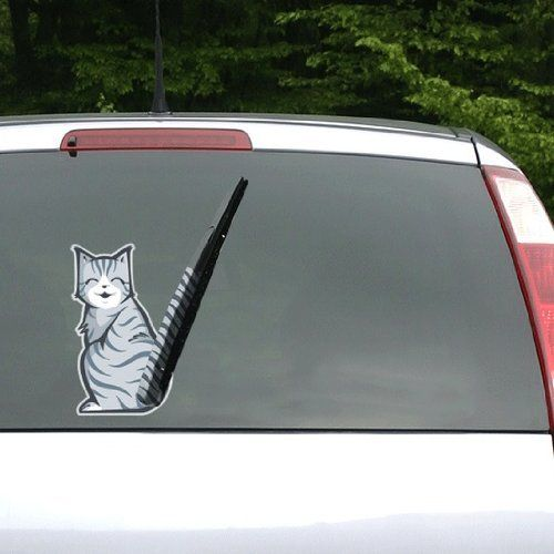 Best Funny Images On Pinterest Car Stickers Amen And Car Decals - Car window decals near mestar trek family car decals thinkgeek