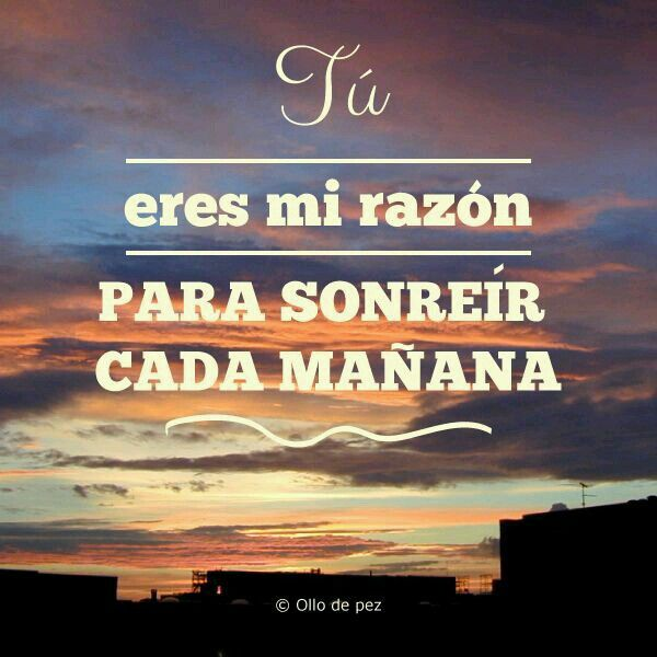 Good Morning Mi Amor Images : Best images about esos buenos d�as on pinterest te