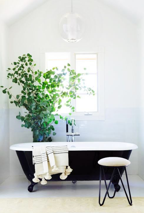 Incorporate an antique bathtub into a minimalism bathroom design. Add a hint of green for an even more fresh look