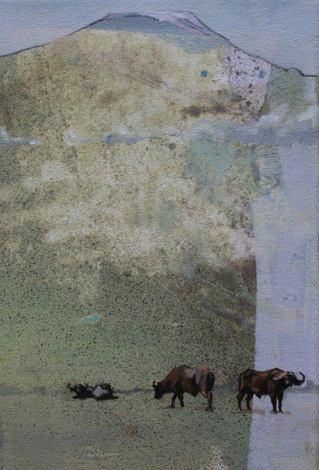 Buffalo by Emily Lamb
