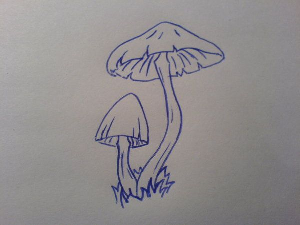 ... img src http www tattoostime com images 340 outline mushrooms tattoos