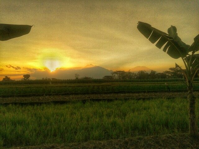 Sunset in klaten