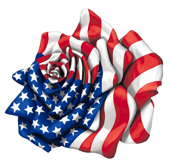 american flag rose | American Rose Flag by ~Patmaniac on deviantART