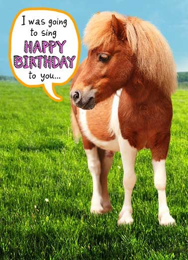 Funny Birthday Card Whats Hot But Im A Little Horse