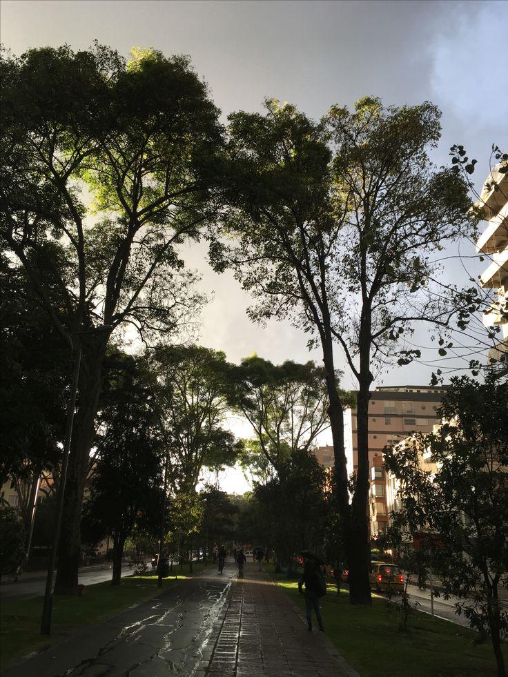 Calle 92, Bogotá, Colombia 13/12/2017