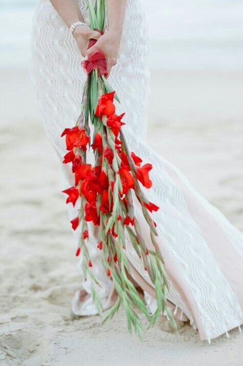 Simply Stunning Arm Sheaf Bridal Bouquet Of Red Gladiolus×××××××××××××××××××