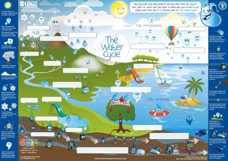 The Water cycle / El ciclo del agua