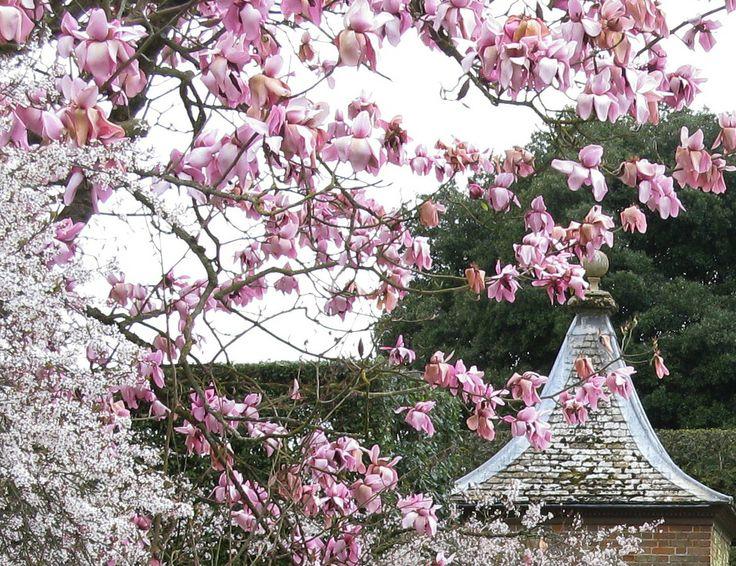 Some lovely spring colours.