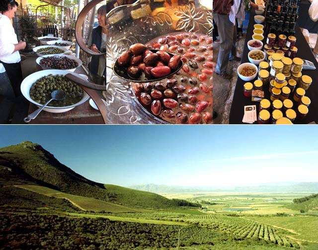 Vote for the Riebeek Valley Olive Festival #KLINK http://winetourismsouthafrica.co.za/klink/the-riebeek-valley-olive-festival/