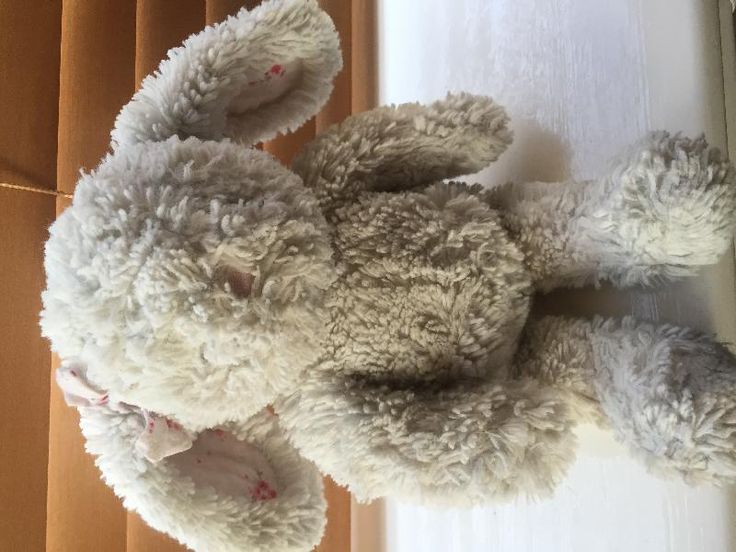 Found on 09 May. 2016 @ Dewsbury. Found near roundabout near sainsburys dewsbury Visit: https://whiteboomerang.com/lostteddy/msg/lavibz (Posted by Lee on 09 May. 2016)