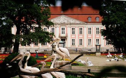 Tierpark - Berlin - Friedrichsfelde