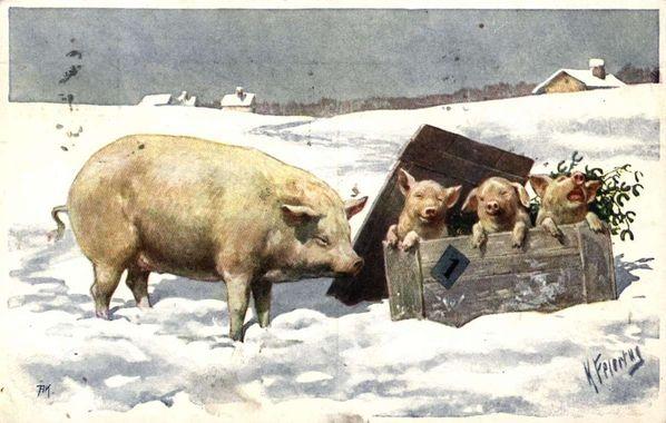 Postkort. Julehilsen. Vintermotiv. Gris med tre grisunger leker i snøen. Illustrert av Karl Feiertag (1874-1914). Poststemplet 24.12.1918.