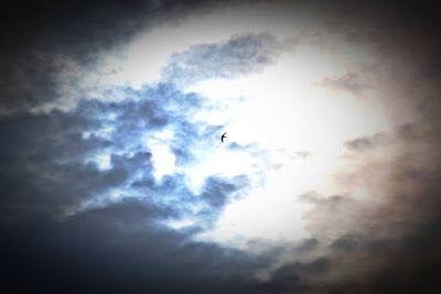 Σκέψεις: ένα σημάδι, Βαγγέλης Μαρκάκης