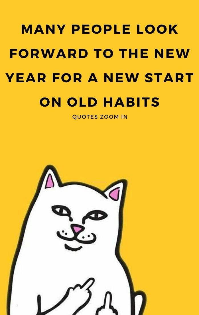 New Year Humor Quotes Hilarious Laughing So Funny Funny New Year Funny New Years Memes Funny Quotes