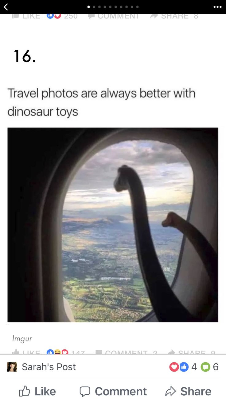 Phone travel pictures with dinosaurs.