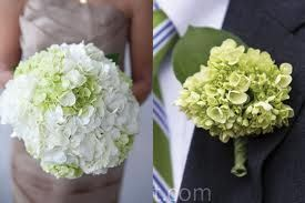 white/green hydrangea wedding bouquets - throw in some blue n perfect!
