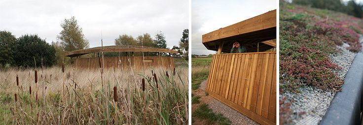 Bird hide with green roof and wires for trailing plants to mellow into the surroundings.