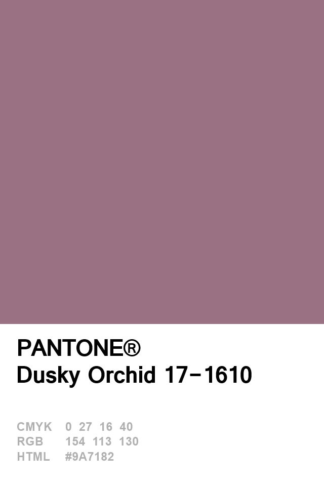 Pantone Dusky Orchid 17-1610 Colour of The Day 26 January