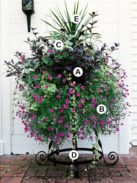 How to plant containers