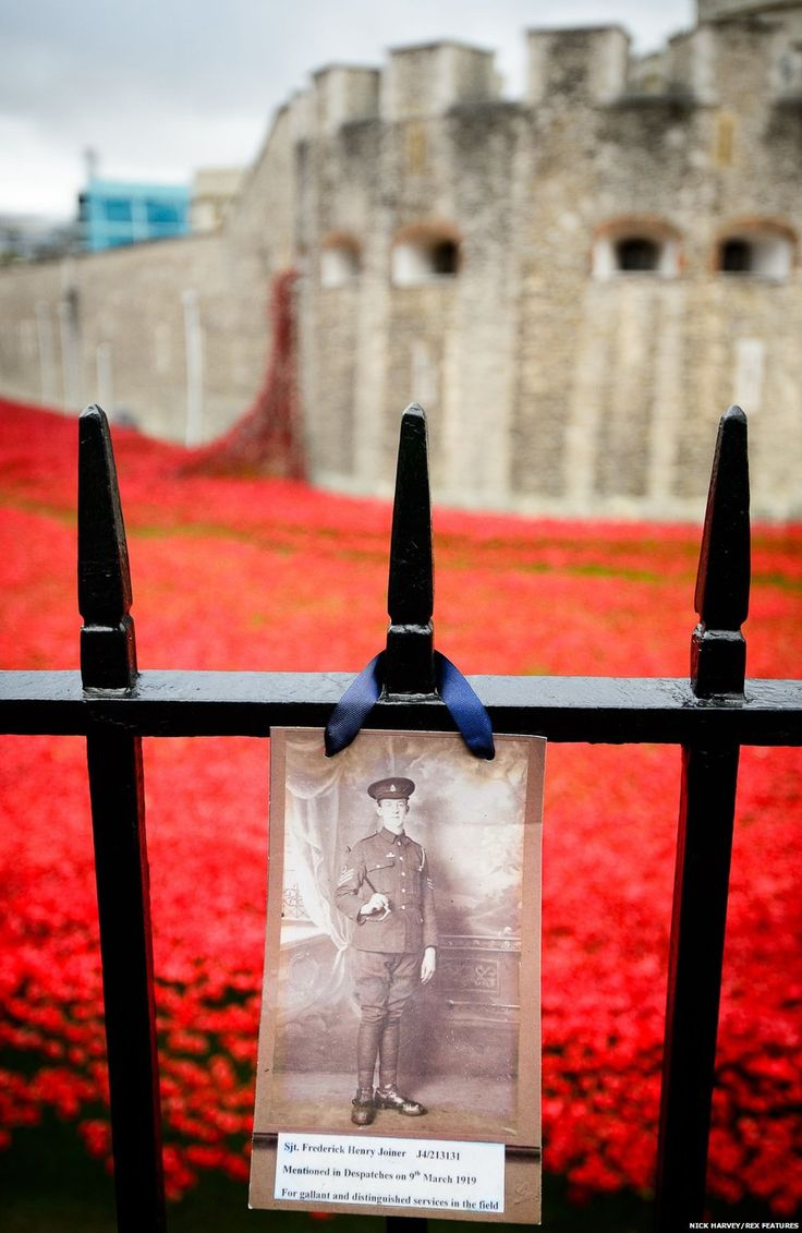 Photograph of WWI soldier on the railings -  Photographs of servicemen have been placed on the railings that surround the moat. The Tower of London was where more than 1,600 men swore an oath to the Crown after enlisting for the war. - Tower of London poppy installation