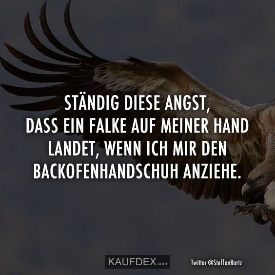 Ständig diese Angst, dass ein Falke auf meiner Hand landet