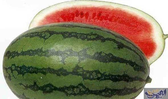 البطيخ يخفض الضغط ويقي من أمراض القلب Watermelon Melon Fruit