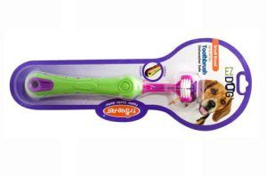Top 10 Best Toothbrushes for Dogs in 2016 Reviews - All Top 10 Best