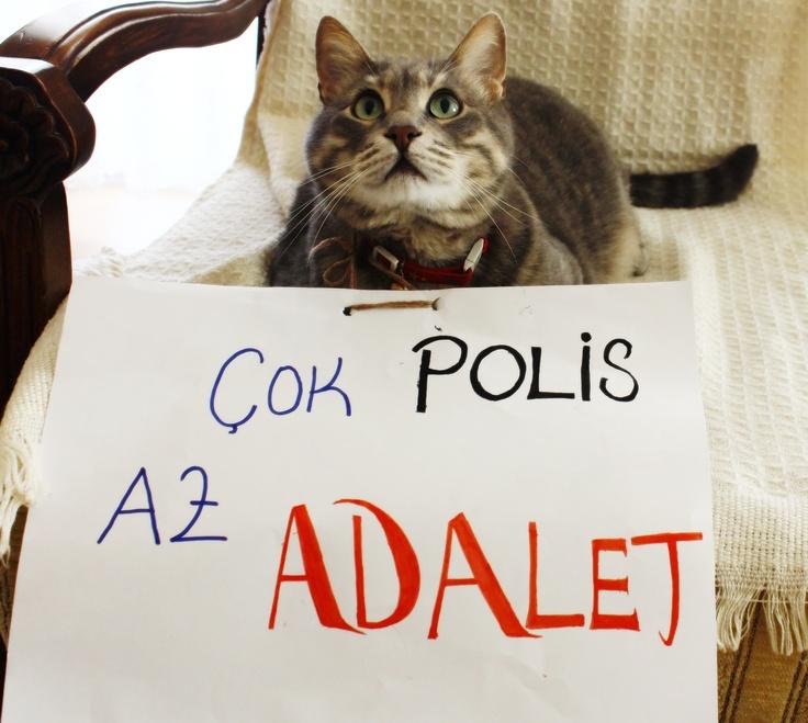 """""""Çok Polis, Az ADALET!"""""""