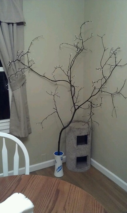 Bringing the outdoors in. Picked a tree branch I liked the shape of, stained it and now it brings some design to my dining room.