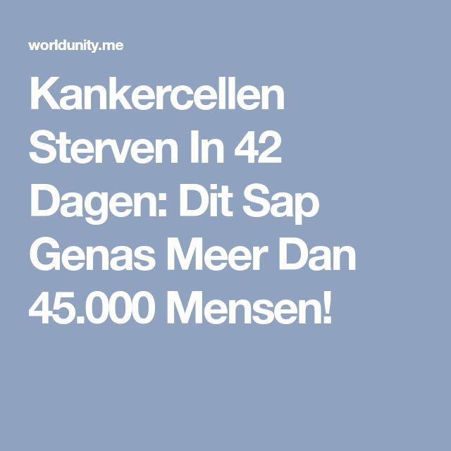 Kankercellen Sterven In 42 Dagen: Dit Sap Genas Meer Dan 45.000 Mensen!