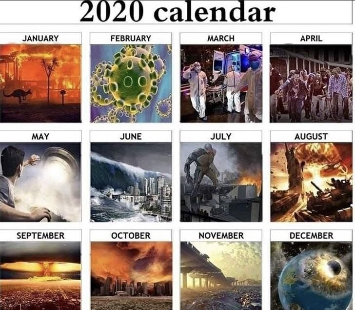 2020 Calendar Memes Engracado Memes Engracado