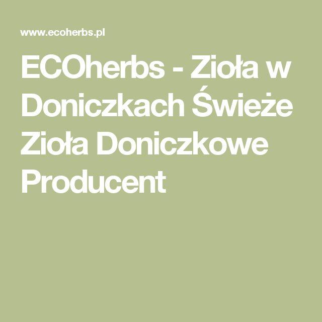 ECOherbs - Zioła w Doniczkach Świeże Zioła Doniczkowe Producent