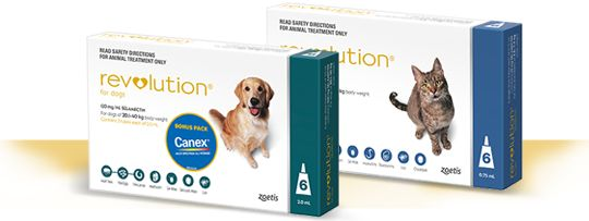 About Revolution RX Red K9 Flea and Tick preventing treatment