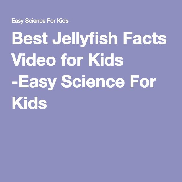 Best Jellyfish Facts Video for Kids -Easy Science For Kids