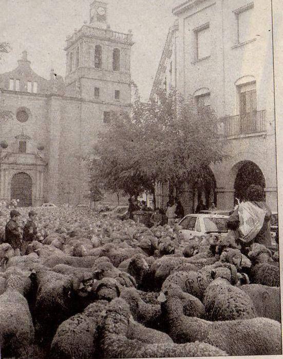Vva de la Serena. Badajoz. Extremadura