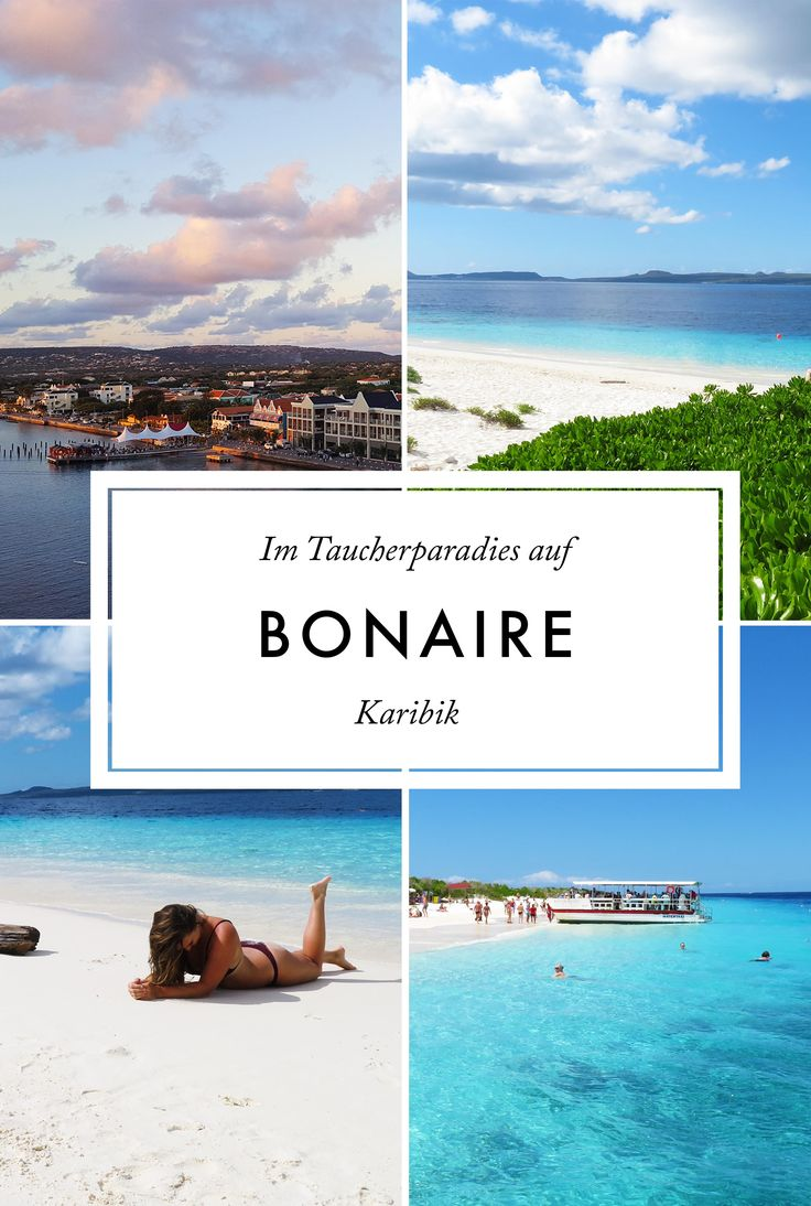 Bonaire: Das noch unbekannte Paradies in der Karibik Traveldiary | Caribbean Beach | Island | What to do on Bonaire | Paradise | Explore the World | TUI Cruise with Mein Schiff 5 | Scuba Dive | Snorkeling