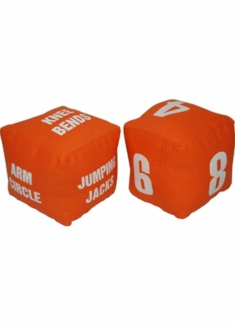 Fitness Dice -- $14 from Creative Kidstuff or could try to DIY