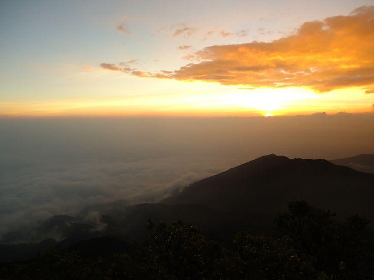 Gunung Gede Pangrango (Bogor - Cianjur)