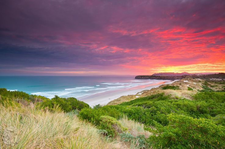 Dunedin, Pacific Ocean, The South Isalnd, New Zealand