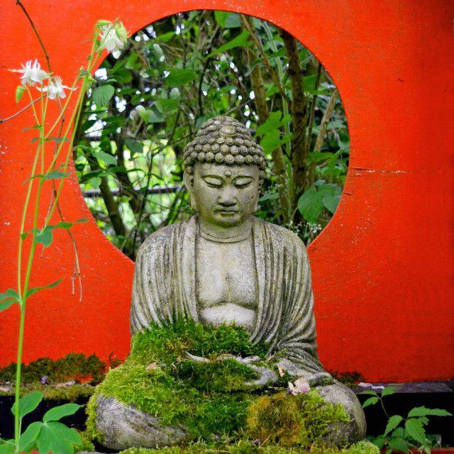 'Little Zen Garden' on Picfair.com