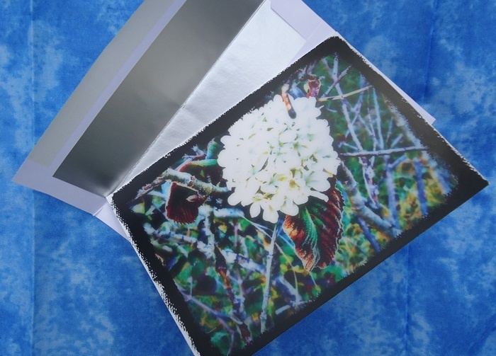 Altered Colorful Flower Blank Greeting Card $4.50 #thecraftstar