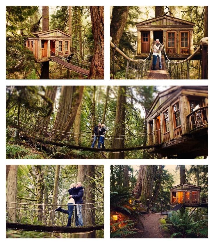 Treehouse Point, Issaquah, Washington