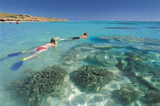 Snorkeling at Coral Bay #Australia