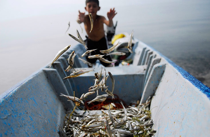 Freshly caught fish called Pepesca are flung onto the fore of a boat on Lake Ilopango in San Salvador, El Salvador.