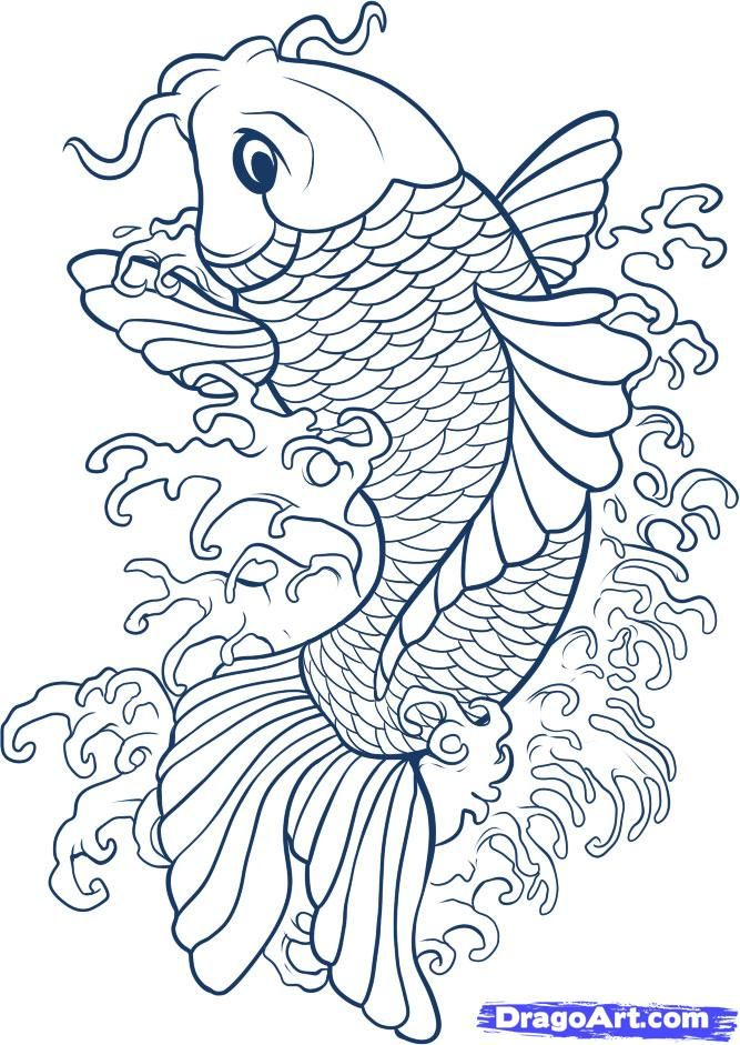 Drawing koi fish connect to study of japan and japanese for Koi fish drawings