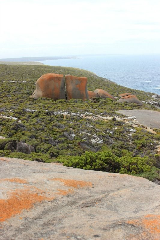 The view from Remarkable Rocks