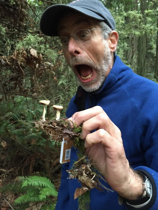 "Want to feel totally safe about ingesting what you grow? Listen to Jeff Lowenfels, a garden columnist better known as ""America's Dirtiest Lawyer,"" who will be speaking about soils at an Oregon Cannabis Association event March 31 at the Melody Ballroom at 615 SE Alder St. in Portland."