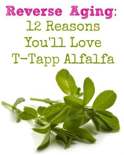 Reverse Aging: 12 Reasons You'll Love T-Tapp Alfalfa #ttapp #ttappworkout #alfalfa