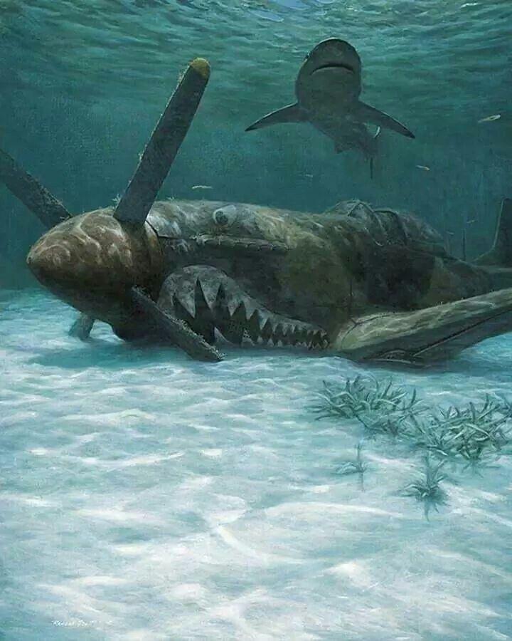 2-Sharks on the Sea floor...