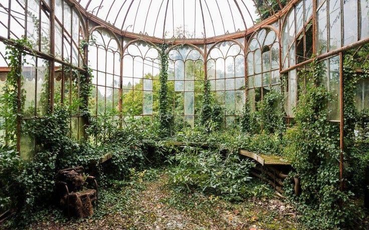 elhagyatott üvegház